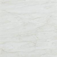 TileKraft керамогранит Floor Tiles-PGVT 2010 600x600 Полированная